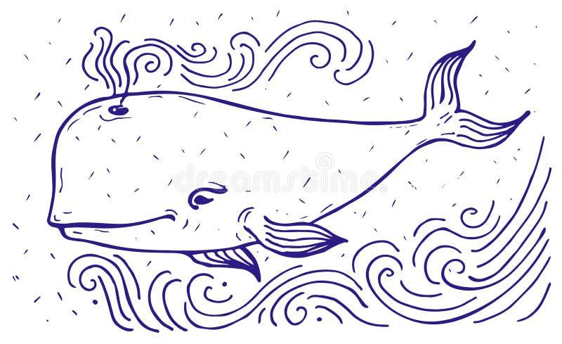 Etichetta della balena bianca illustrazione di stock