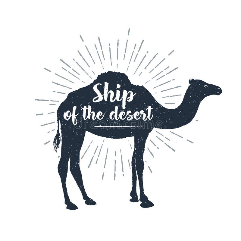 Etichetta disegnata a mano con l'illustrazione e l'iscrizione strutturate di vettore del cammello