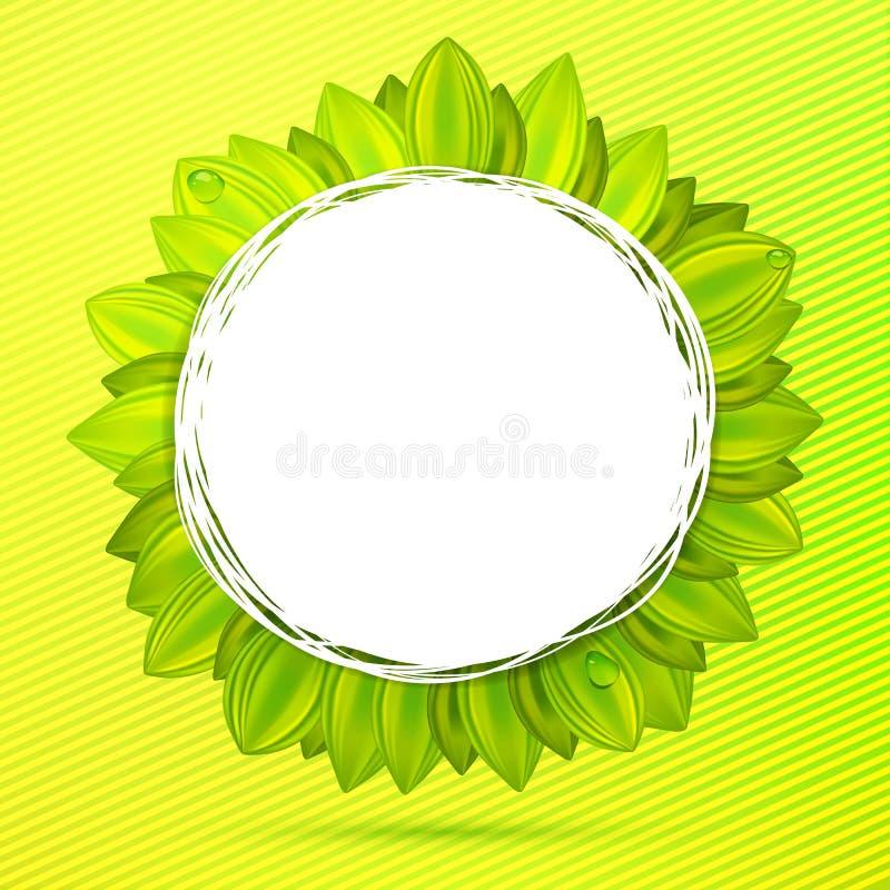 Etichetta floreale dell'estratto di colori verdi illustrazione di stock