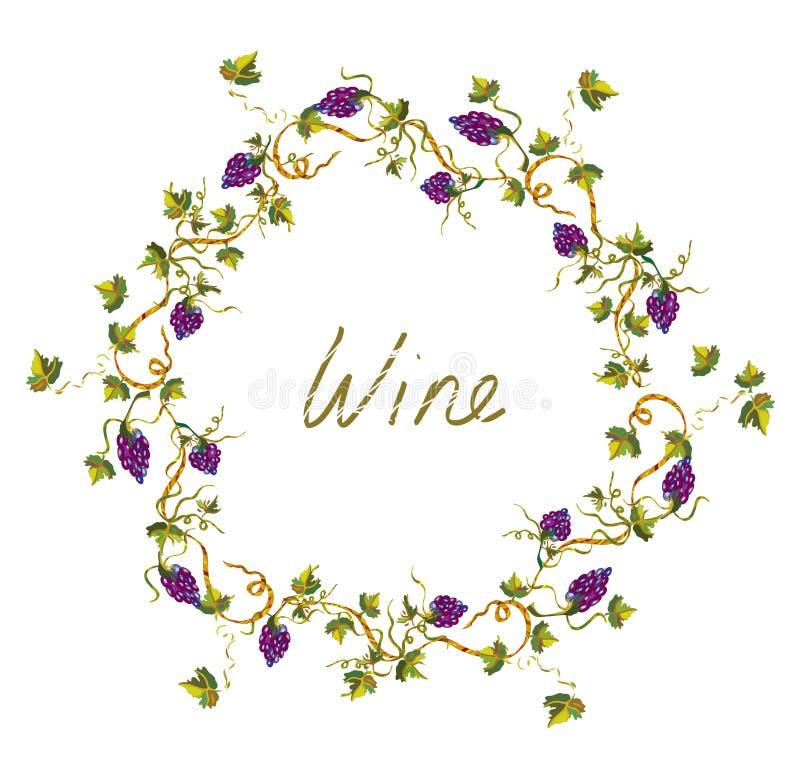 Etichetta o fondo del vino con le viti e l'uva - illlustration illustrazione vettoriale