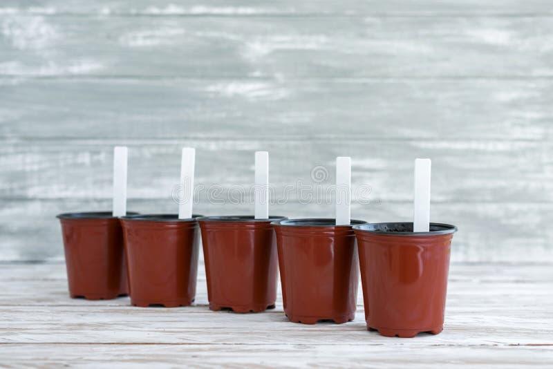 Etichette bianche in vasi marroni su fondo di legno grigio immagini stock libere da diritti