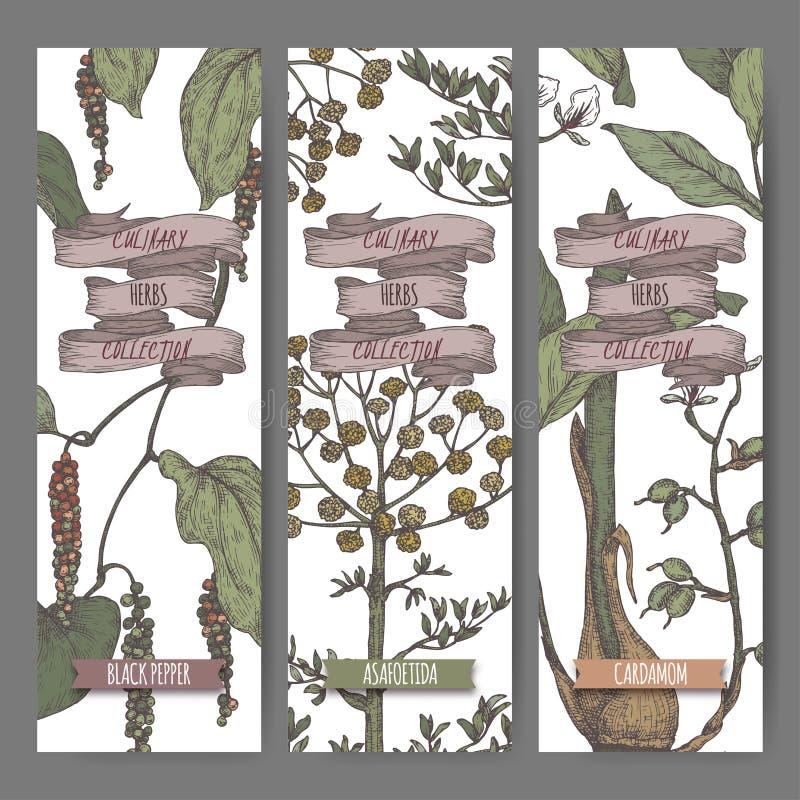 Etichette a tre colori con lo schizzo siriano dell'origano, del sumac e della noce moscata illustrazione di stock