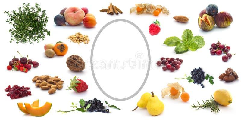 Etiket met vruchten, kruiden en kruiden royalty-vrije stock afbeelding