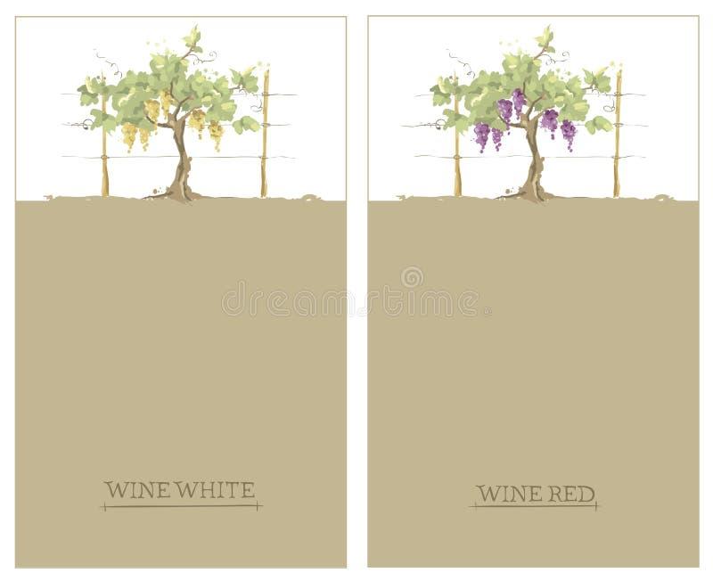 Etikett för rött och vitt vin -- uppsättning royaltyfri illustrationer