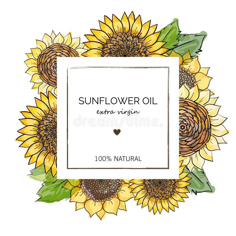 Etikettdesignmall för extra jungfrulig solrosolja Solrosor för illustration för vektorhand utdragna på fyrkantig ram på vit stock illustrationer
