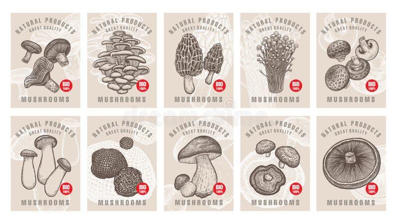Etiketter med den ätliga champinjonuppsättningen stock illustrationer