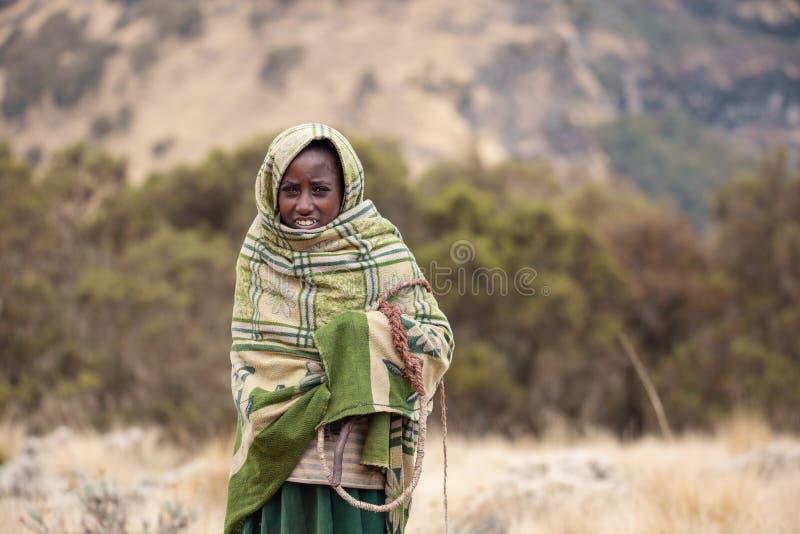 Etiopska pasterki dziewczyna, Simien góry, Etiopia zdjęcie stock