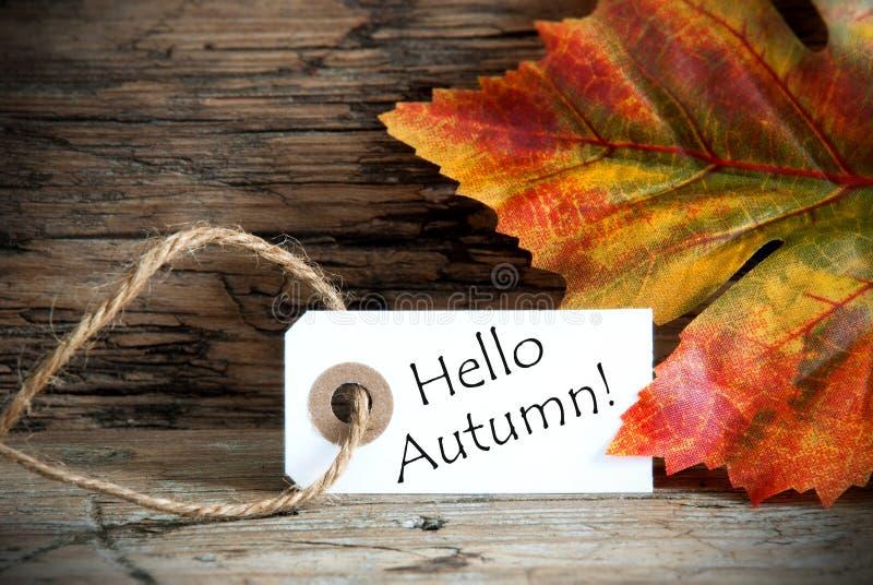 Etiqueta con hola otoño fotografía de archivo libre de regalías