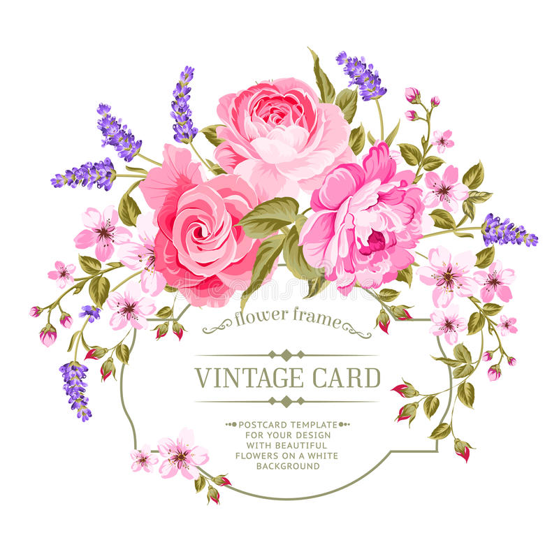 Etiqueta cor-de-rosa do vintage da peônia ilustração royalty free