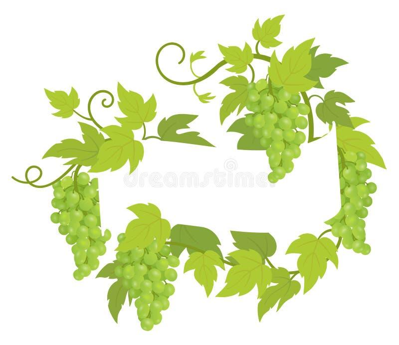 Etiqueta del marco de la planta de la vid La uva de la frontera agrupa la decoraci?n del marco Espacio de la copia para el nombre libre illustration