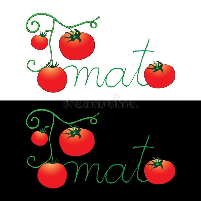 Etiqueta del tomate en fondo blanco y negro libre illustration