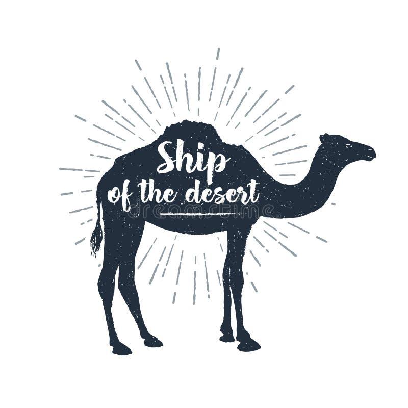 Etiqueta dibujada mano con el ejemplo y las letras texturizados del vector del camello