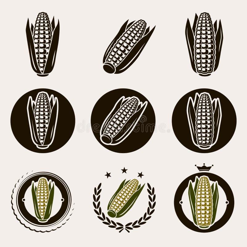 Etiqueta e ícones do milho ajustados Vetor ilustração royalty free
