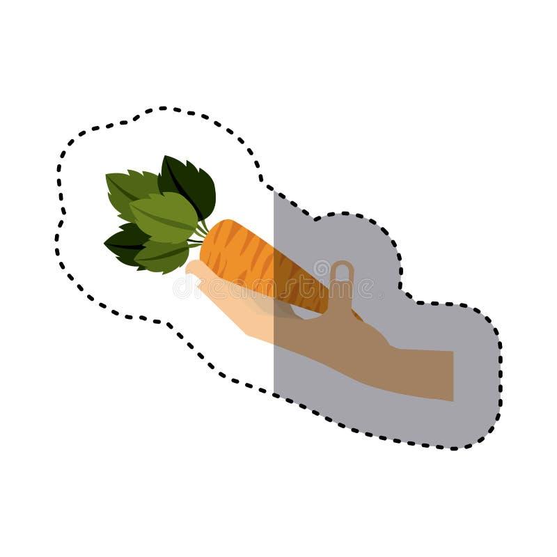 Etiqueta engomada colorida de la mano que sostiene la zanahoria vegetal stock de ilustración