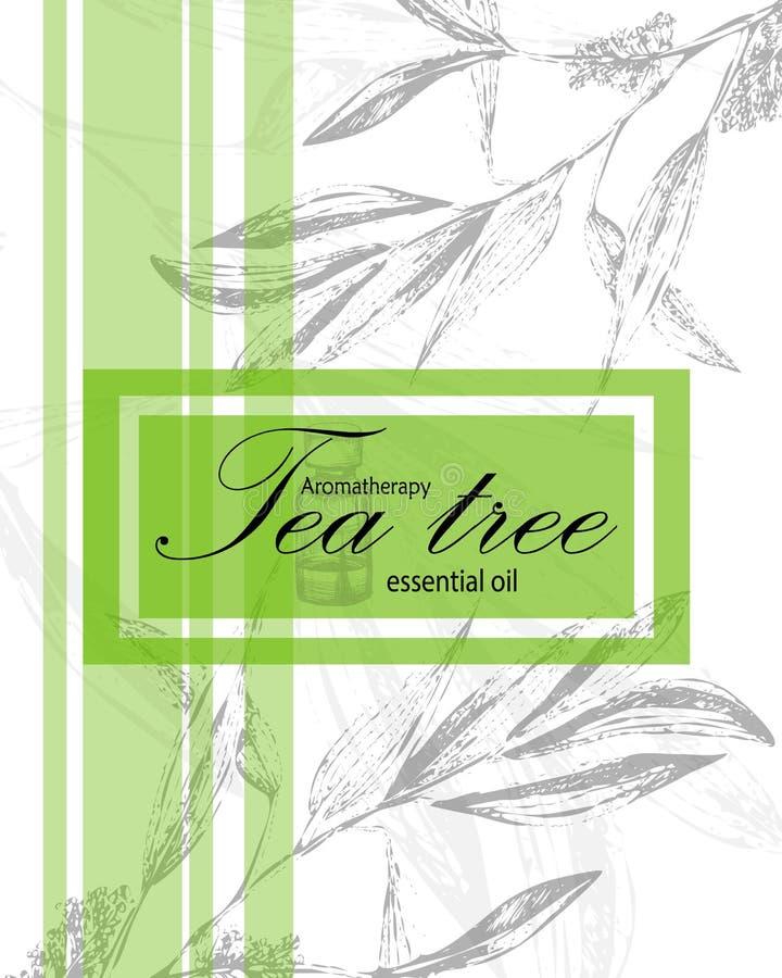 Etiqueta para el aceite esencial del árbol del té ilustración del vector