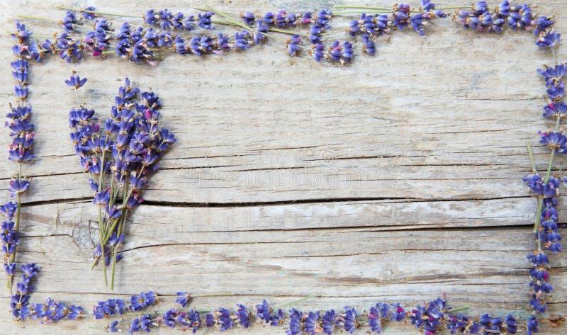 Etiqueta para produtos da alfazema foto de stock