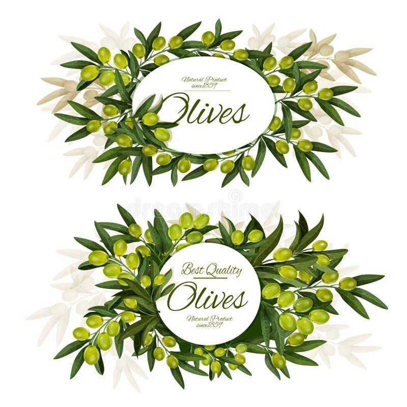 Etiqueta redonda do grupo verde-oliva virgem extra ilustração stock