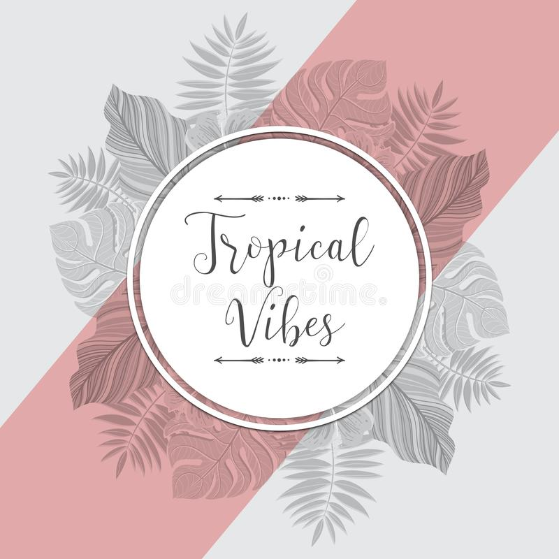 Etiqueta tropical del vintage con las hojas de palma Para la invitación, la tarjeta de felicitación, el cartel, el paquete y más  stock de ilustración