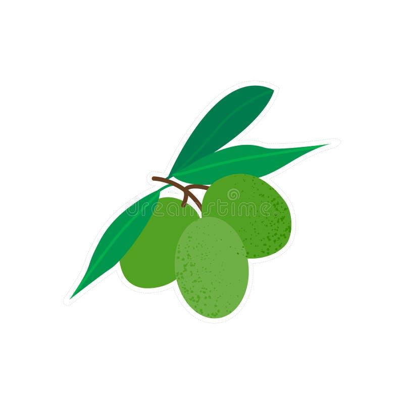 Etiqueta verde-oliva isolada do ícone ilustração stock