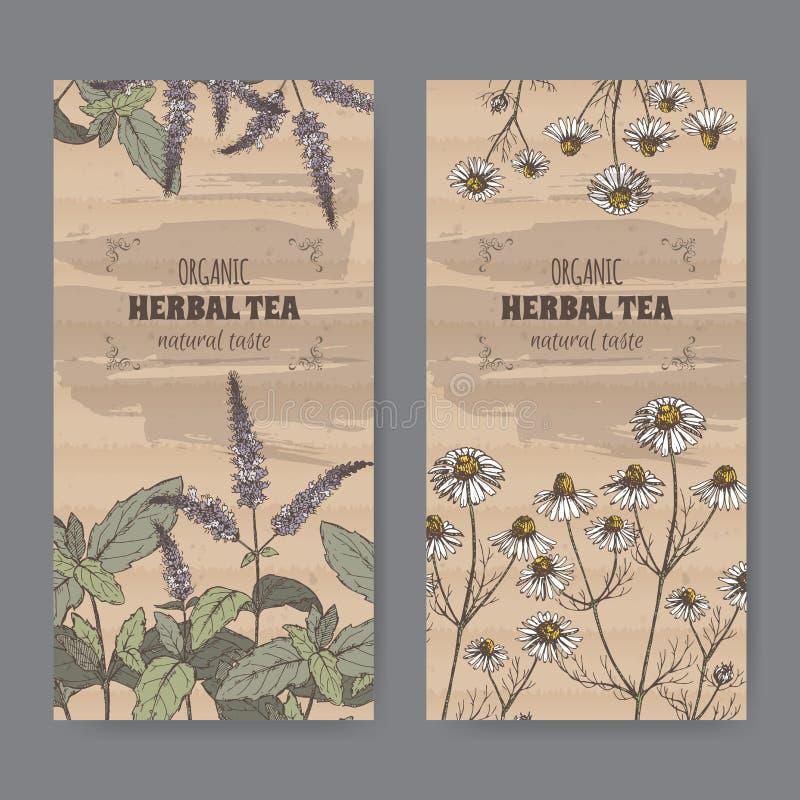 Etiquetas bicolores del vintage para la infusión de hierbas de la hierbabuena y de la manzanilla stock de ilustración