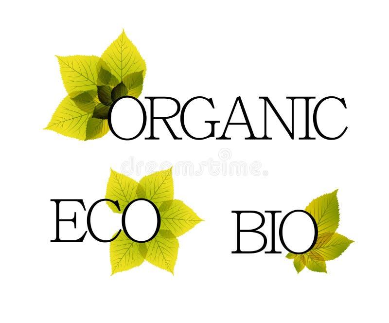 Etiquetas bio, orgânicas e do eco com elementos florais ilustração royalty free