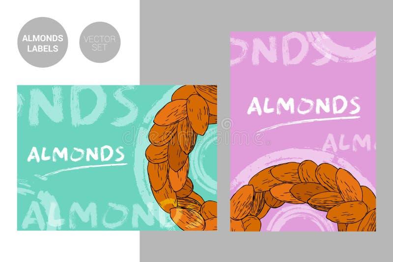 Etiquetas coloridas creativas de las almendras con los elementos exhaustos del movimiento de la tipografía y del cepillo de la ma stock de ilustración