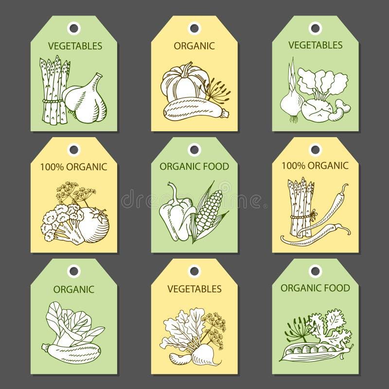 Etiquetas con las diversas verduras e inscripciones ilustración del vector