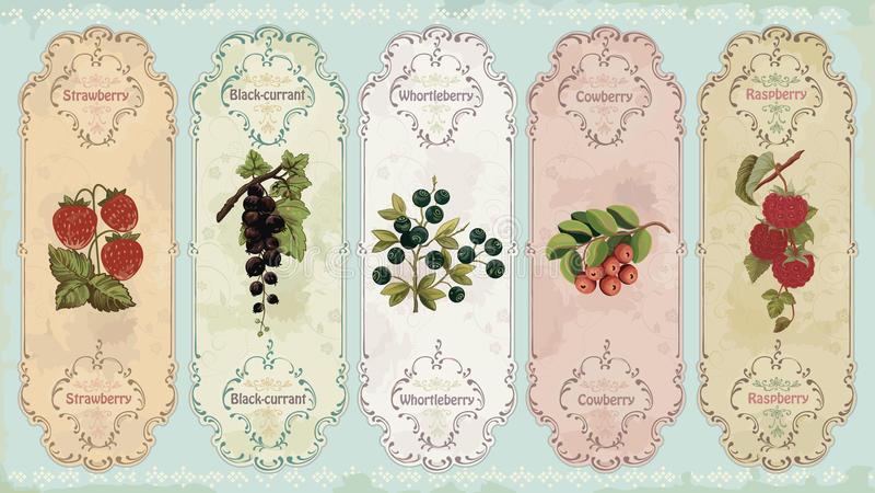 Etiquetas do vintage com bagas ilustração stock
