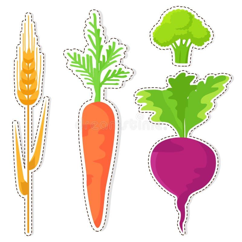 Etiquetas engomadas maduras del vector del cereal y de las verduras fijadas ilustración del vector