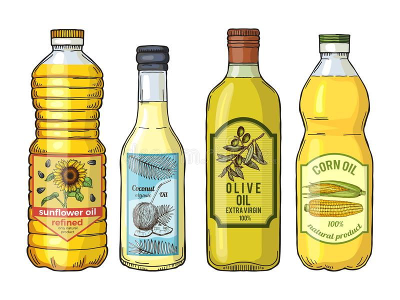 Etiquetas para diversos aceites Girasol, aceituna, maíz y coco Imágenes del vector fijadas libre illustration
