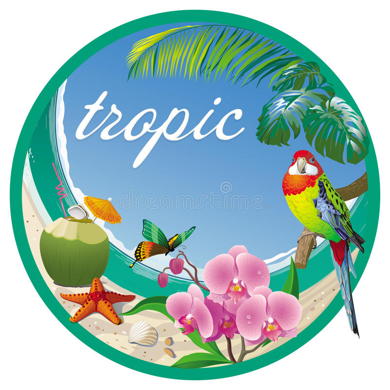 Etiquete o trópico com coco, orquídeas e um papagaio pequeno ilustração stock