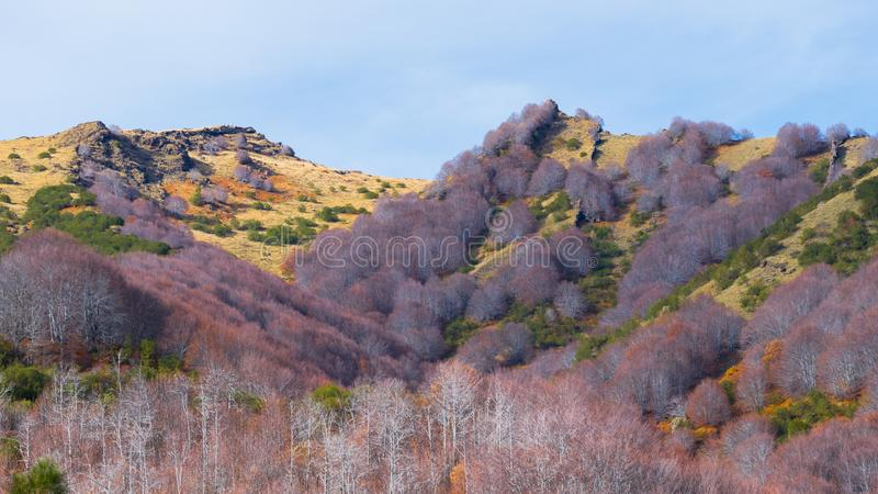 etna góry zdjęcia stock