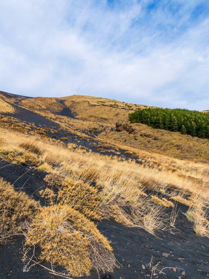 etna góry obraz stock