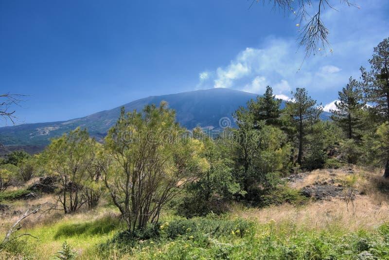 Etna Park Landscape (Sicilia) fotografia stock libera da diritti