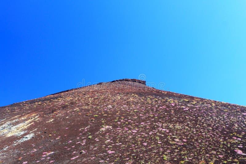 Etna Slope - Sicily stock photo