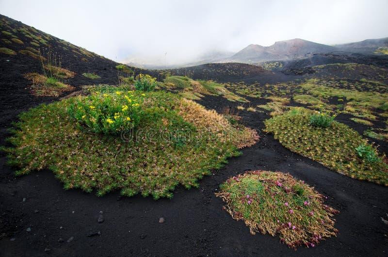 Etna Volcano, Sicília foto de stock