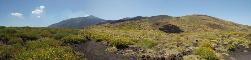 etna wulkan obrazy stock