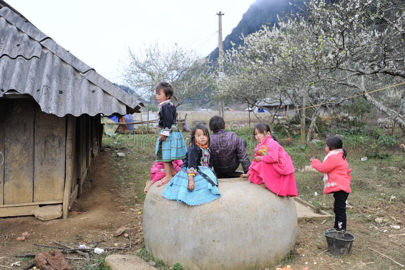 Etnische jonge geitjes in het hooggebergte stock afbeeldingen