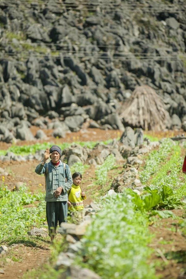 Etnische minderheidvader en dochter op canolagebieden stock afbeelding