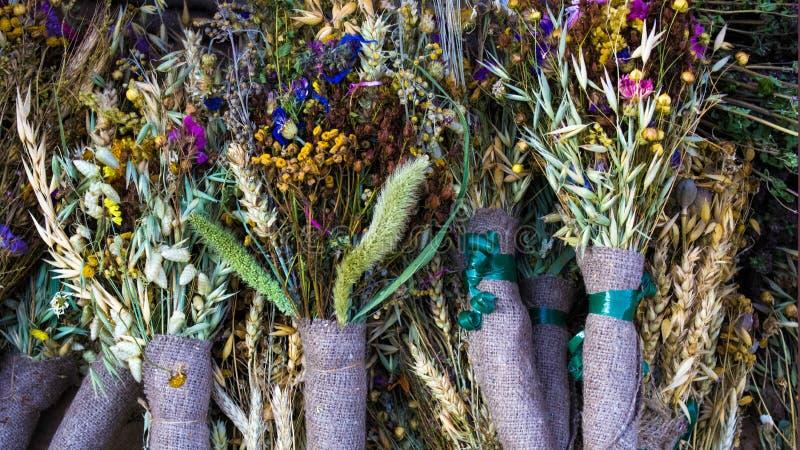 Etno herbs royalty free stock image