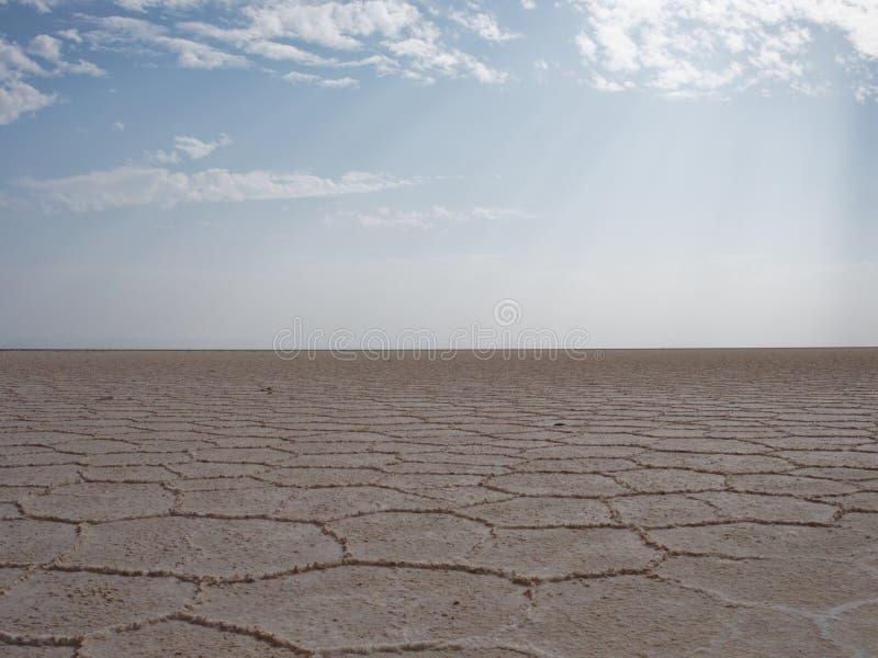 Etopia seco do danakil da sobremesa de sal foto de stock