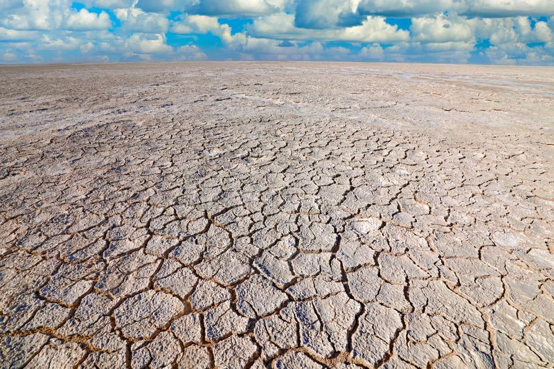 Etosha pan, dry season in Namibia Africa. Dry summer landscape with blue sky and white clouds, White grey muddy lake. Summer. Without water. Traveling in hot stock photo