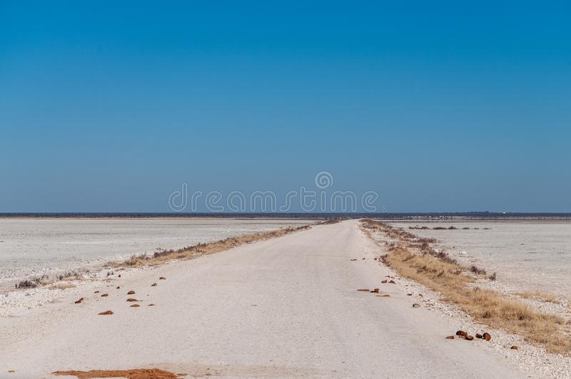 The Etosha Salt Pan. An overview of the empty space of the Etosha salt pan, Ethosha National Park, Namibia royalty free stock image
