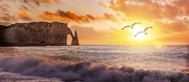 Etretat峭壁在日落的与飞行海鸥 图库摄影