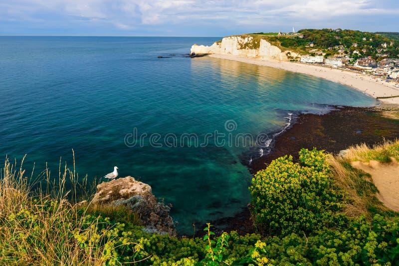 Etretat, Normandië, Frankrijk klippen en strand met mooie beroemde kustlijn tijdens de eb royalty-vrije stock fotografie