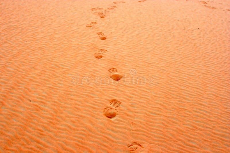 etsad sand fotografering för bildbyråer