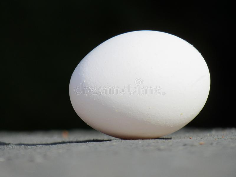 Ett ägg som visas i svart bakgrund som gjuter en skugga på jordningen royaltyfri foto