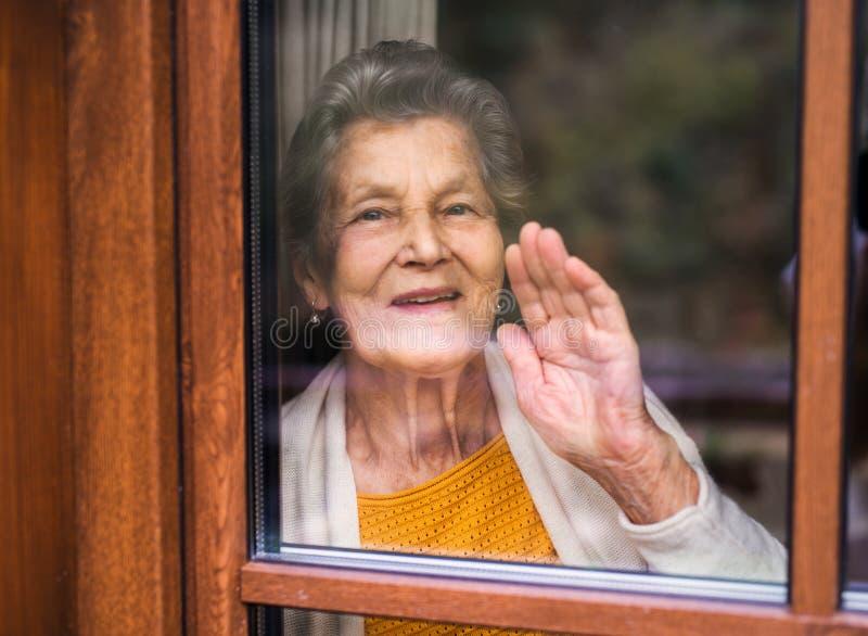 Ett äldre kvinnaanseende av fönstret som ut ser Skjutit till och med exponeringsglas royaltyfri bild