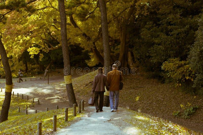 Ett äldre par som tycker om en gå under hösten i Hamarikyu trädgårdar, Tokyo, Japan royaltyfria bilder