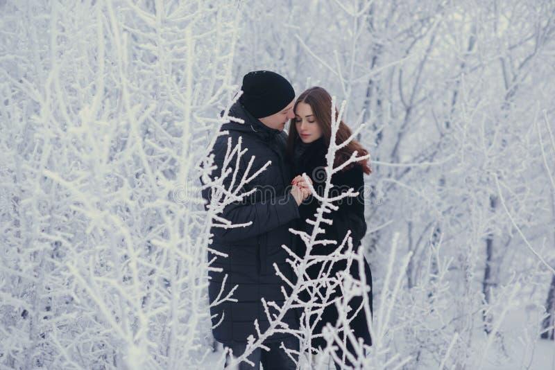 Ett älska par på en vinter går Snökärlekshistoria, vintermagi Man och kvinna på den frostiga gatan Grabben och flickan är vilar royaltyfria bilder